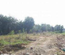 ขายที่ดิน โซนบ้านสวน(หนองข้างคอก) ต.บ้านสวน อ.เมืองชลบุรี จ.ชลบุรี