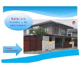 ขายและให้เช่าบ้านเดี่ยว 2 ชั้น ม.พฤกษา โซนบางละมุง ต.ห้วยใหญ่ อ.บางละมุง จ.ชลบุรี (I-Net : 573396)