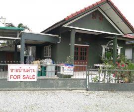 ขายบ้านเดี่ยวชั้นเดียว หมู่บ้านเกษตรรุ่งเรือง ต.บางละมุง อ.บางละมุง จ.ชลบุรี(574271)
