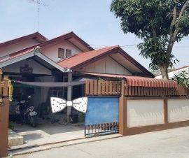 ขายและให้เช่า บ้านเดี่ยวหมู่บ้านพัฒนา ต.หนองรี อ.เมืองชลบุรี จ.ชลบุรี(574592)